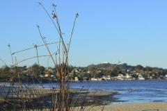Playa Puntas Yeguas